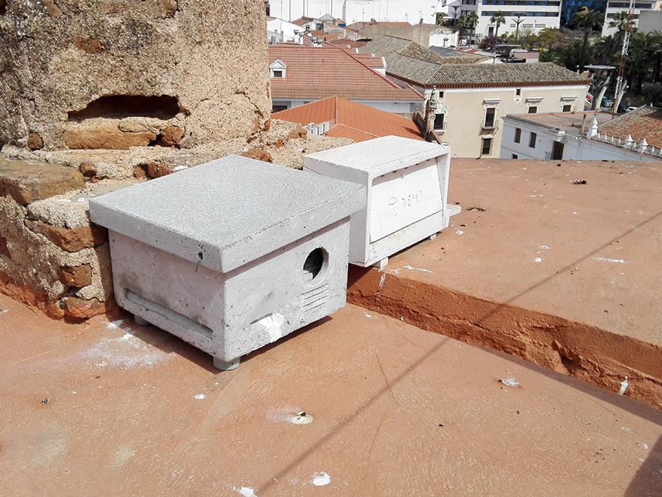 Instalación de nidales - ZEPAURBAN