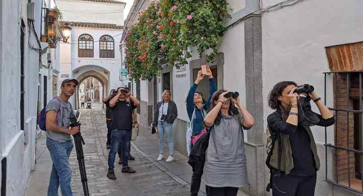 La pasada semana, el proyecto LIFE-ZEPAURBAN ha recibido la visita de Sara Mora, del equipo externo NEEMO-IDOM de la Comisión Europea, para conocer de primera mano cómo se está desarrollando el proyecto.