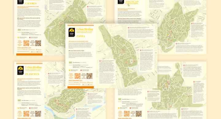 mapas-urban-birdind